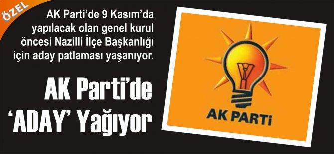 AK Parti'de 'ADAY' Yağıyor