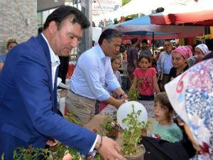 Germencik'te Çiçek Dağıtımı Dünyanın En Özel Çiçeklerine Yapıldı