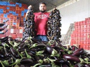 İstanbul'da zam şampiyonu patlıcan