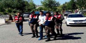 Buharkent'te PKK Operasyonu: 1 Terörist Yakalandı