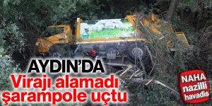 Virajı alamayan çöp kamyonu şarampole yuvarlandı