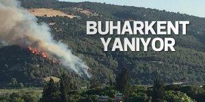 Buharkent'te yangın