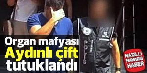 Organ mafyası çift tutuklandı