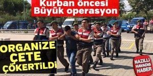 Jandarma, organize çeteyi çökertti
